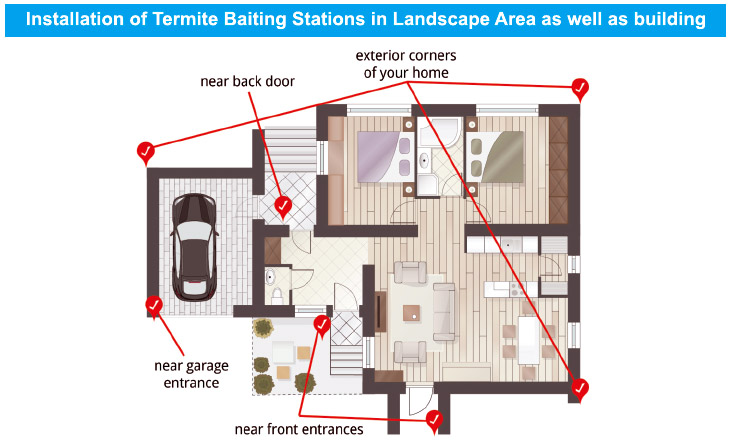 installation-of-termite-baiting-stations