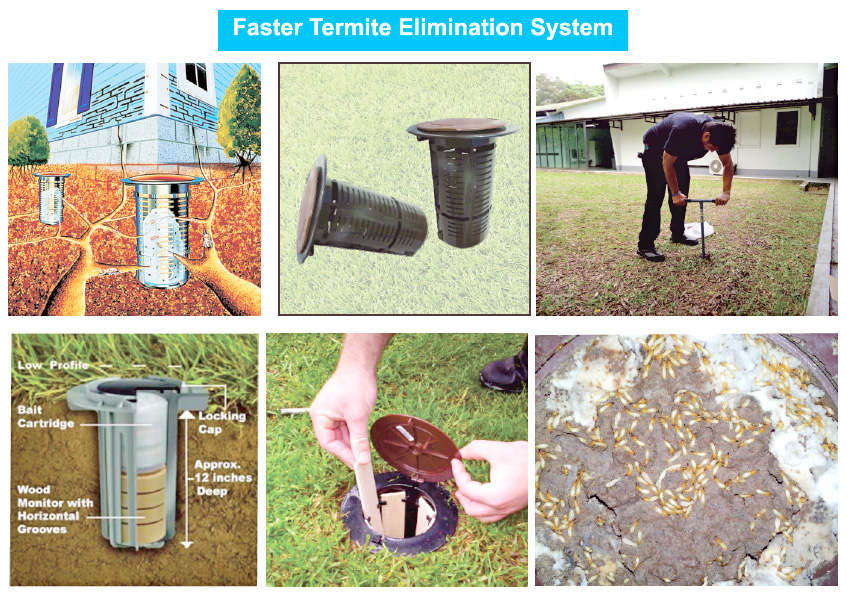 Termite-Baiting-Technology