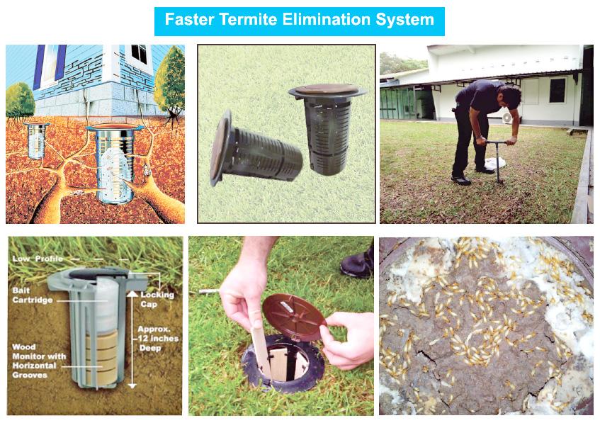 Termite-Baiting-Technology